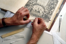 Book repair techniques demonstrated by a Newberry conservator.